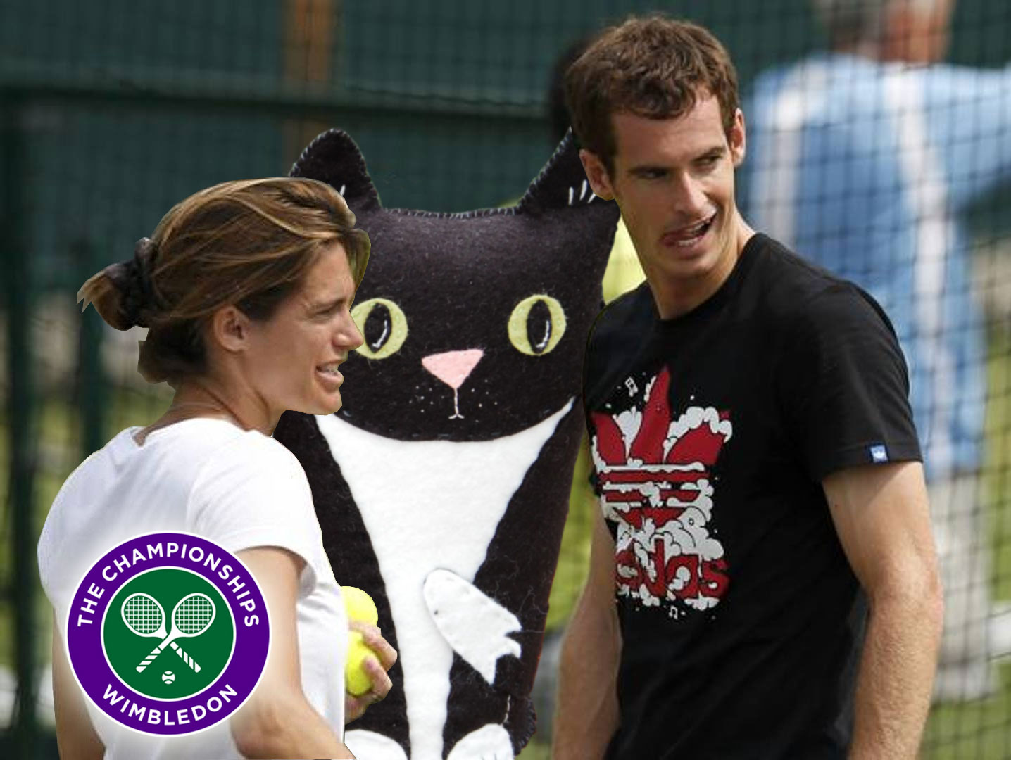 Amelie, Felt Cat and Andy discuss tactics ahead of this week at Wimbledon.