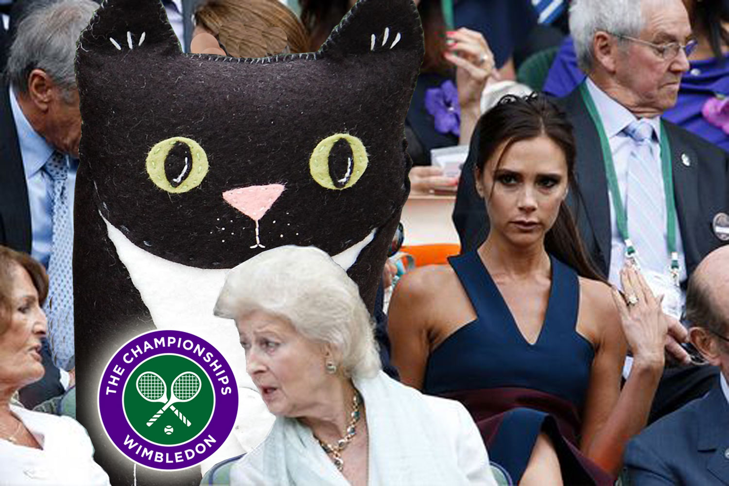 Posh turns up at Wimbledon with her fashionable friend Felt Cat.
